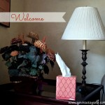 Create Welcoming Spaces With Kleenex Style