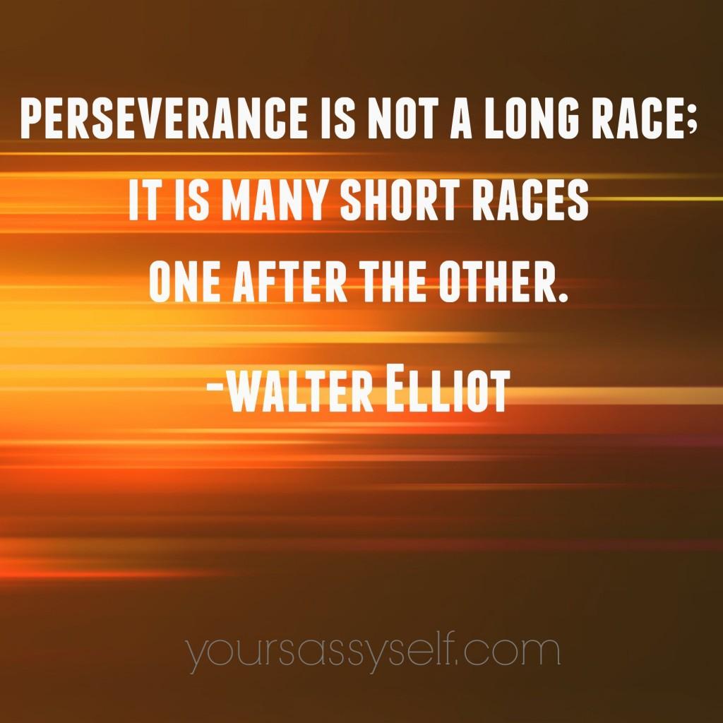 WalterElliotPerseveranceQuote-yoursassyself.com