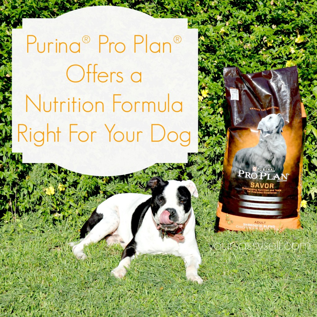 Purina Pro Plan - yoursassyself.com