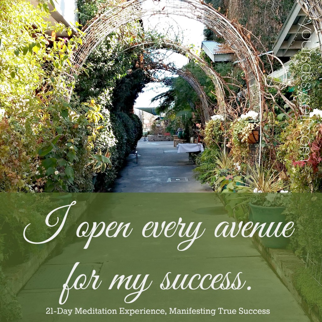 Open Avenues to Success - Quote - yoursassyself.com