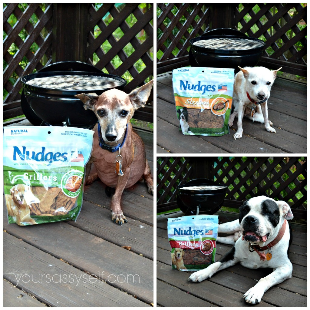 Dogs Next to Their Fav Nudges® Grillers & Sizzlers - yoursassyself.com