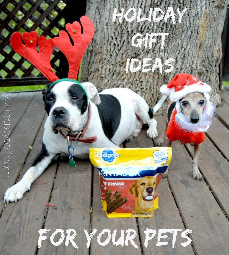 Holiday Gift Ideas for Your Pets - yoursassyself.com
