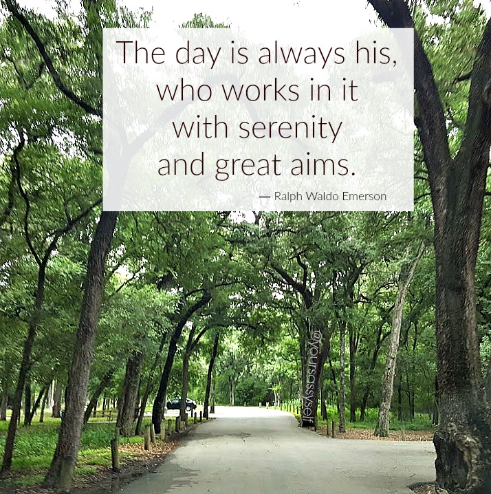Ralph Waldo Emerson quote - yoursassyself.com