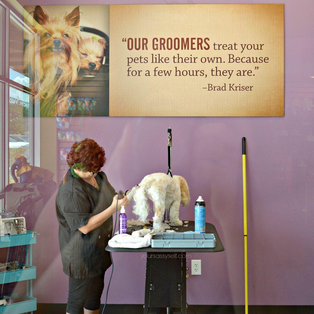 krisers-grooming-yoursassyself-com