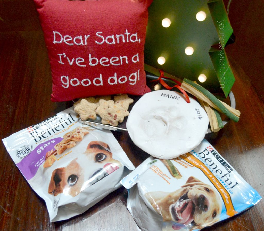 purina-treats-for-diy-paw-print-ornament-party-yoursassyself-com