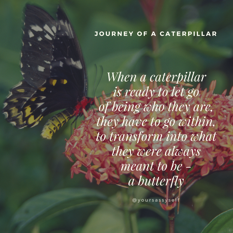 When a caterpillar is ready to let go of being who they are, they have to go within, to transform into what they were always meant to be - a beautiful butterfly - yoursassyself.com