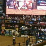 Beautiful Day to Rodeo San Antonio