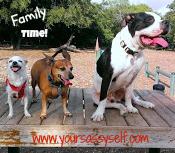 FamilyTime-yoursassyself.com