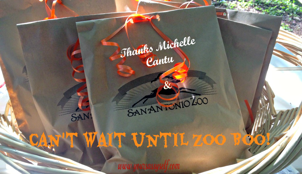Halloween Isn't Just for Kids…Who Knew?  The San Antonio Zoo Boo Did!
