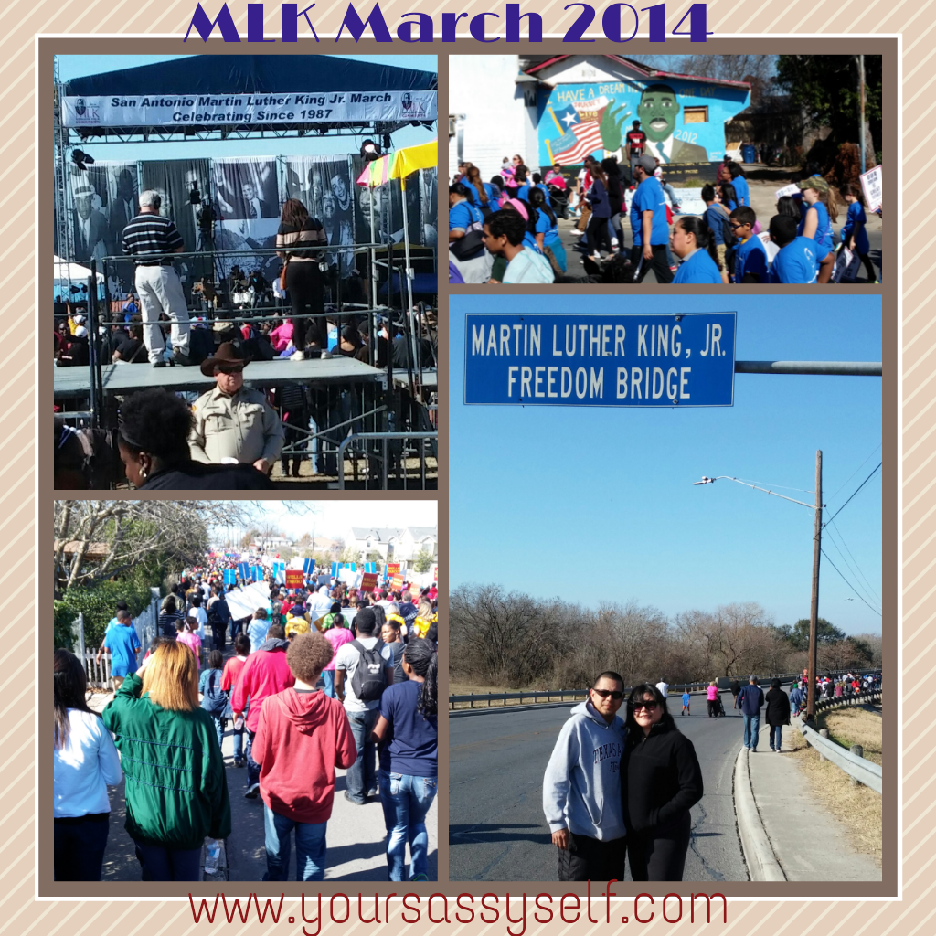 MLKMarch2014-yoursassyself.com