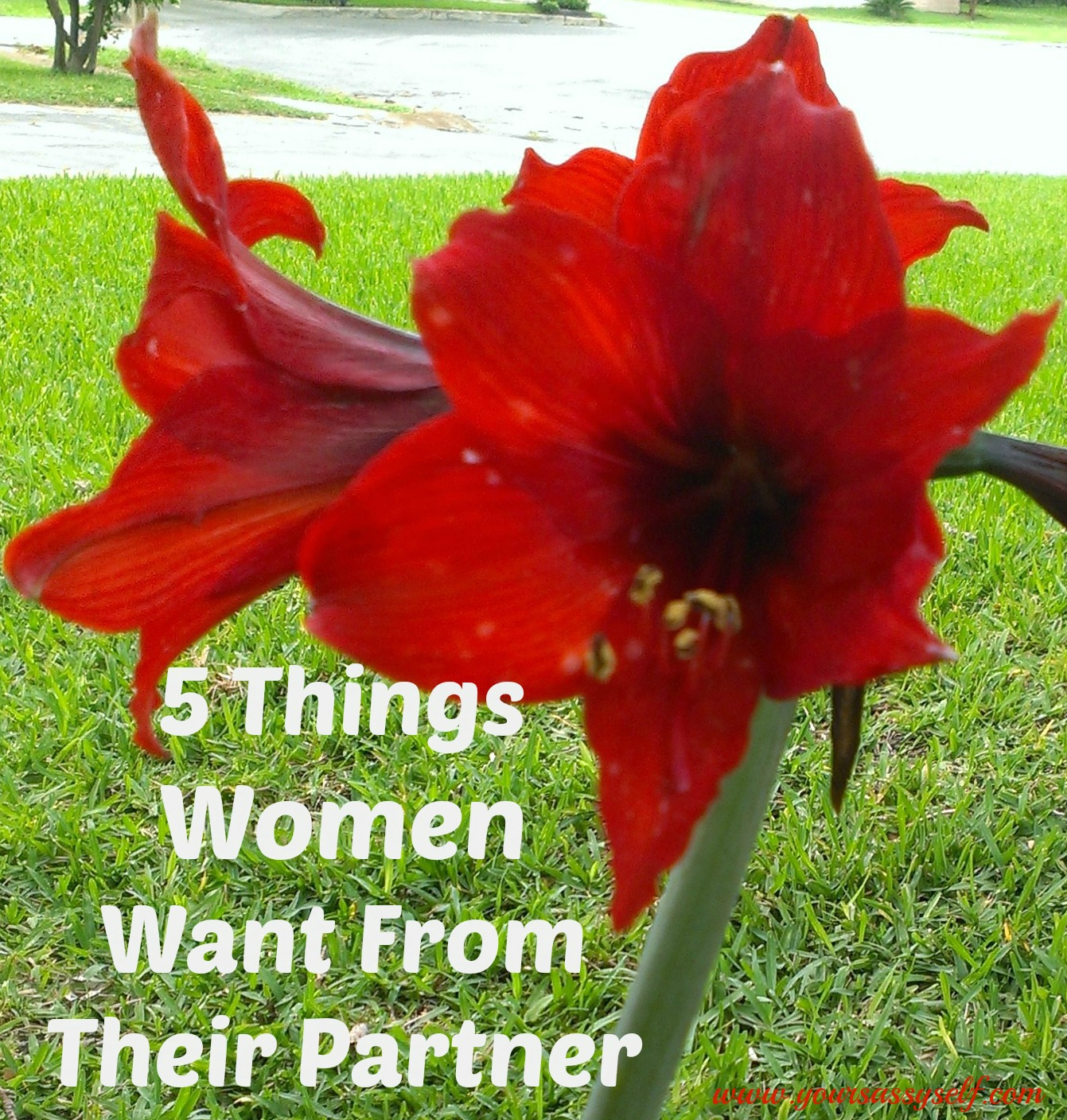 5 Things Women Want From Their Partner