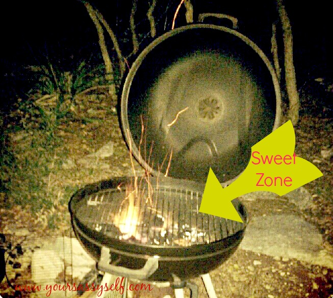 BBQ Grill-yoursassyself.com