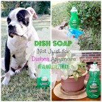 Palmolive Dish Soap, Not Just for Dishes Anymore #Palmolive25Ways #cbias
