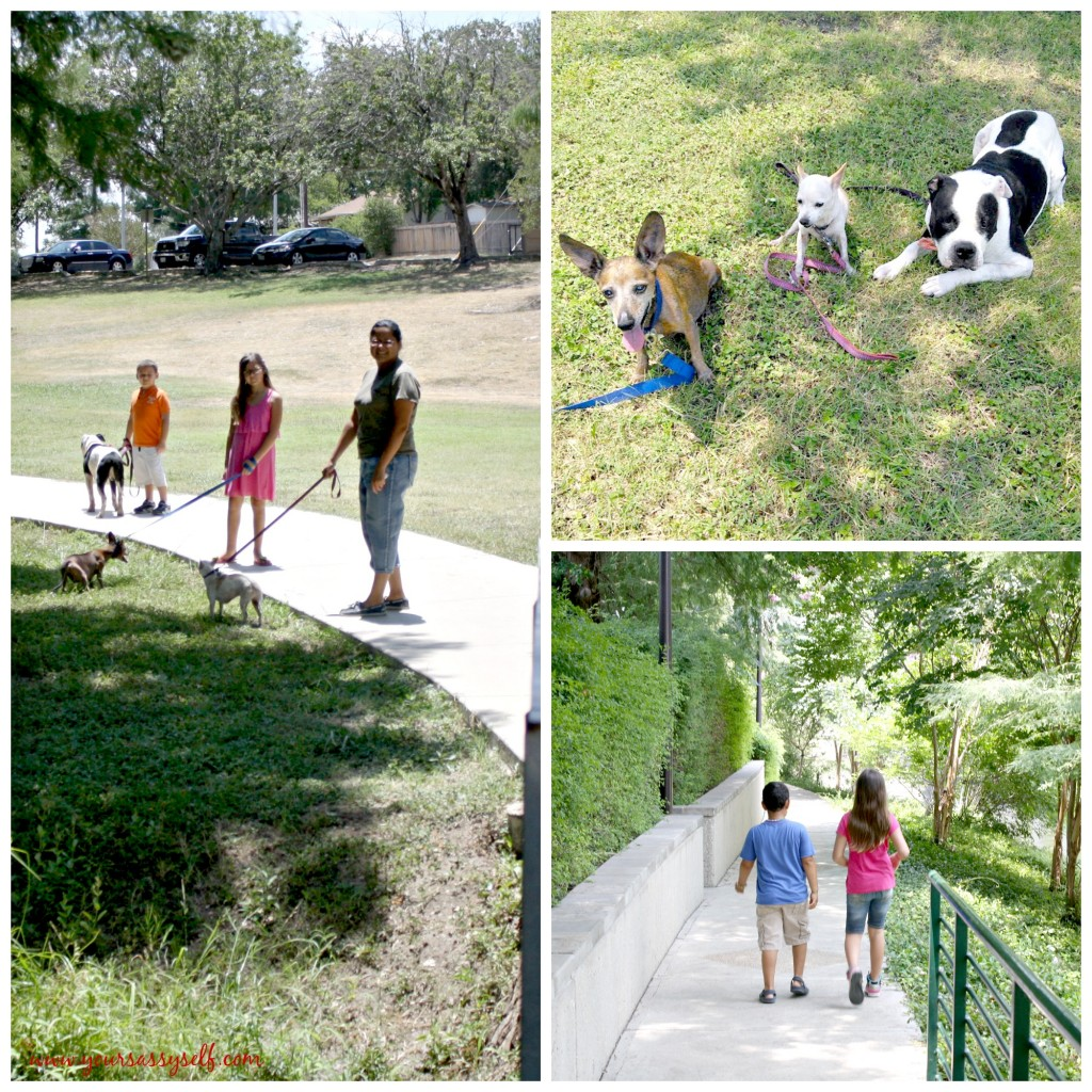 San Antonio Parks-yoursassyself.com