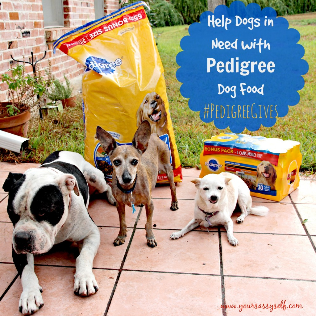 Help Dogs In Need With Pedigree-yoursassyself.com