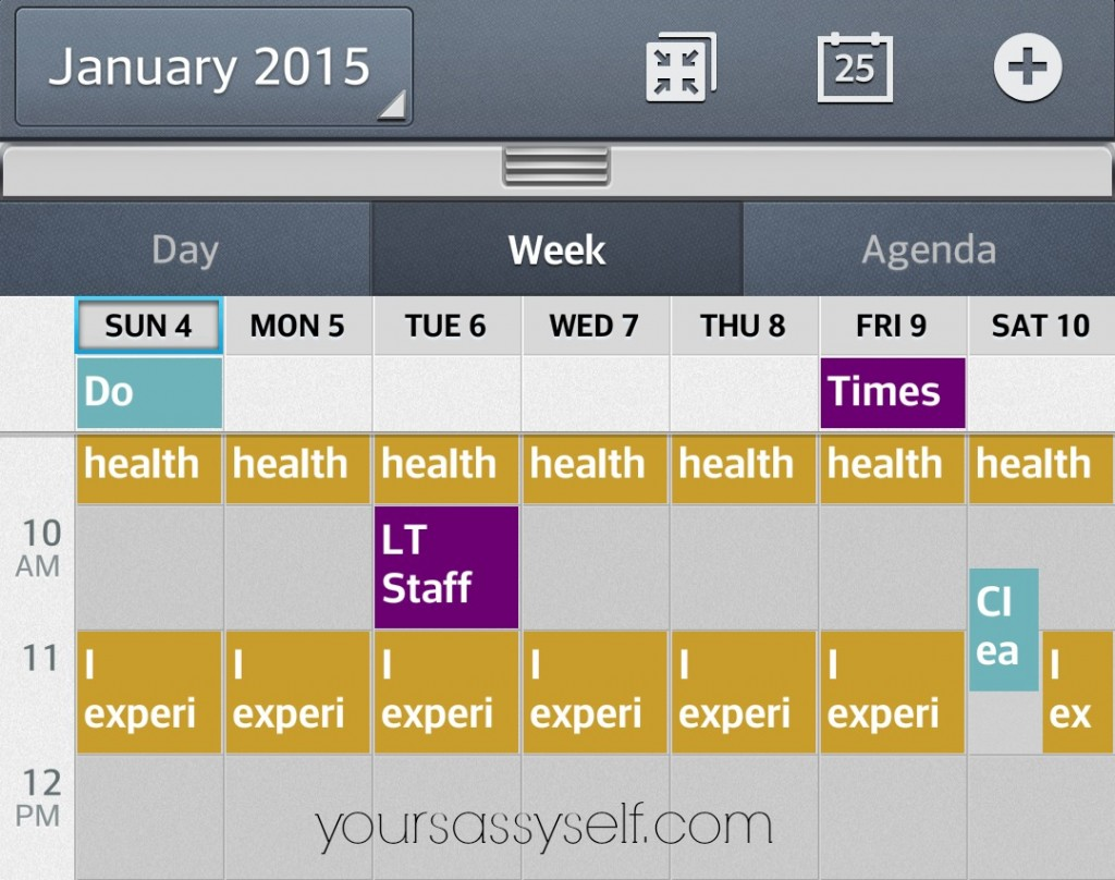 Google Calendar Screenshot-yoursassyself.com