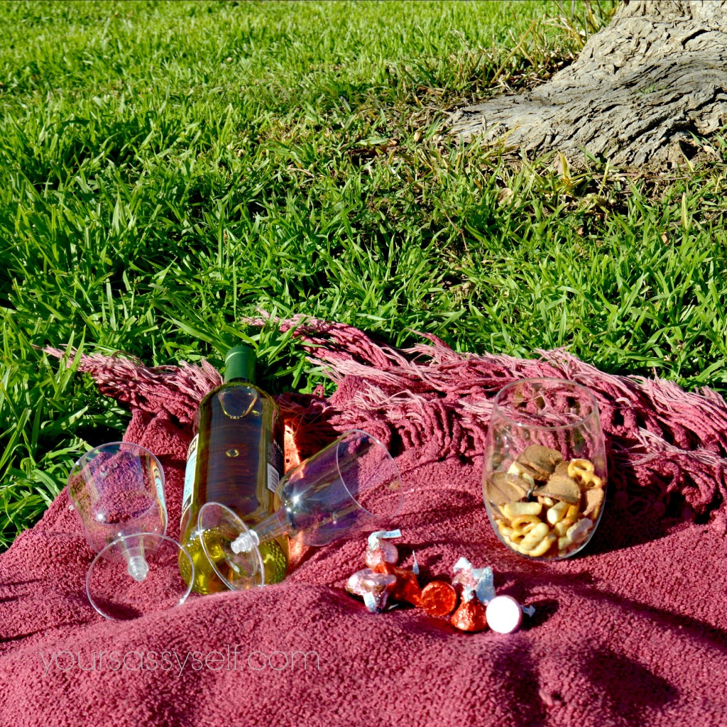 Picnic Items for Romantic Getaways - yoursassyself.com