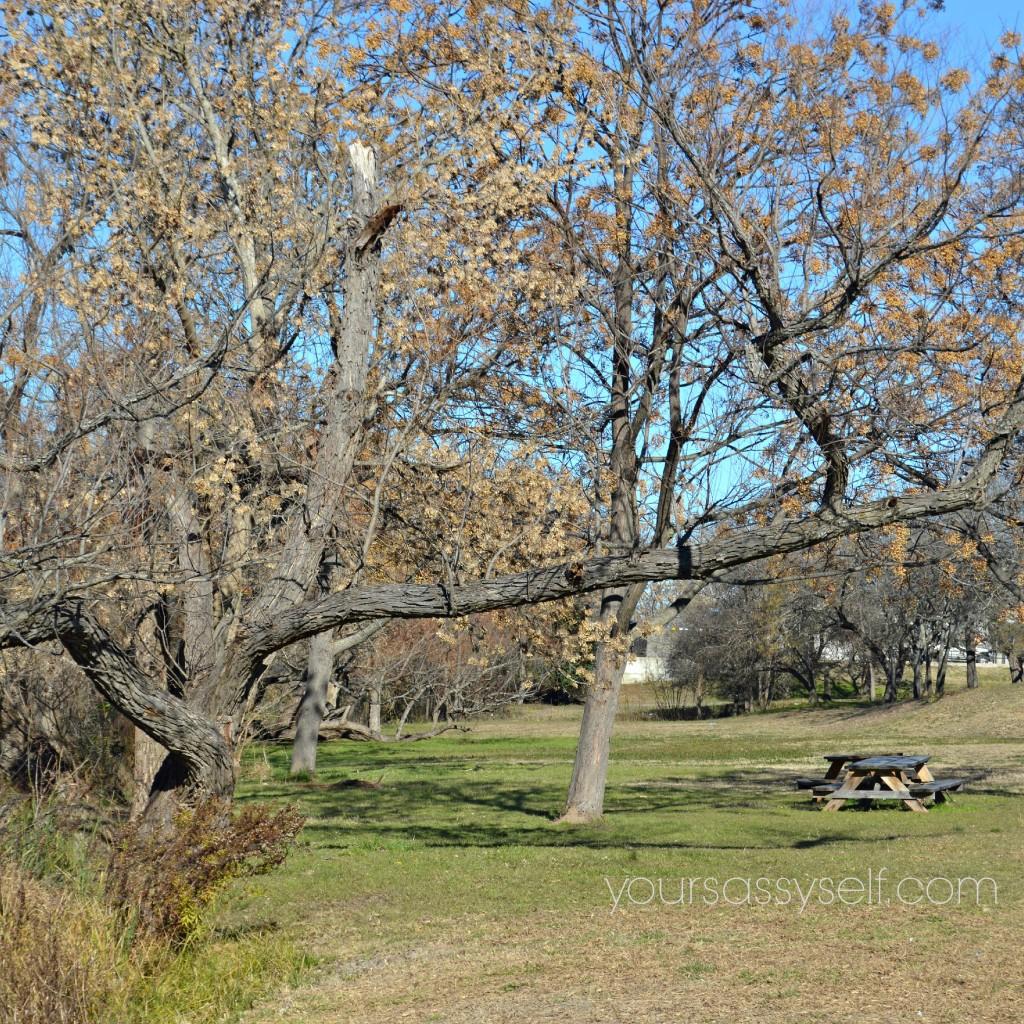 Picnic Spot in Kerrville TX - yoursassyself.com
