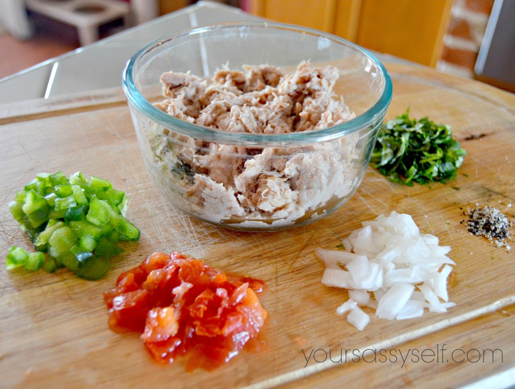 Tuna Cake Ingredients - yoursassyself.com
