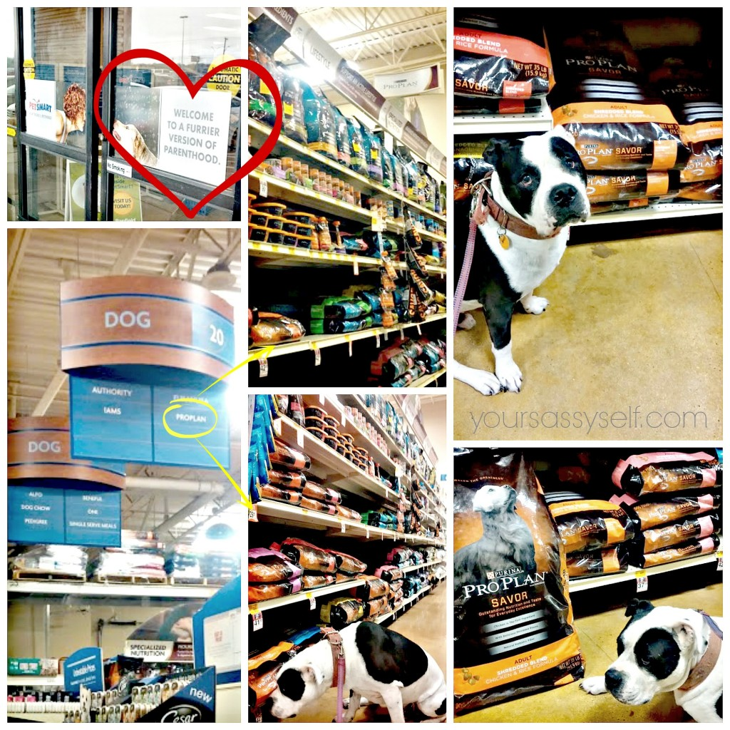 Purina Pro Plan at PetSmart - yoursassyself.com