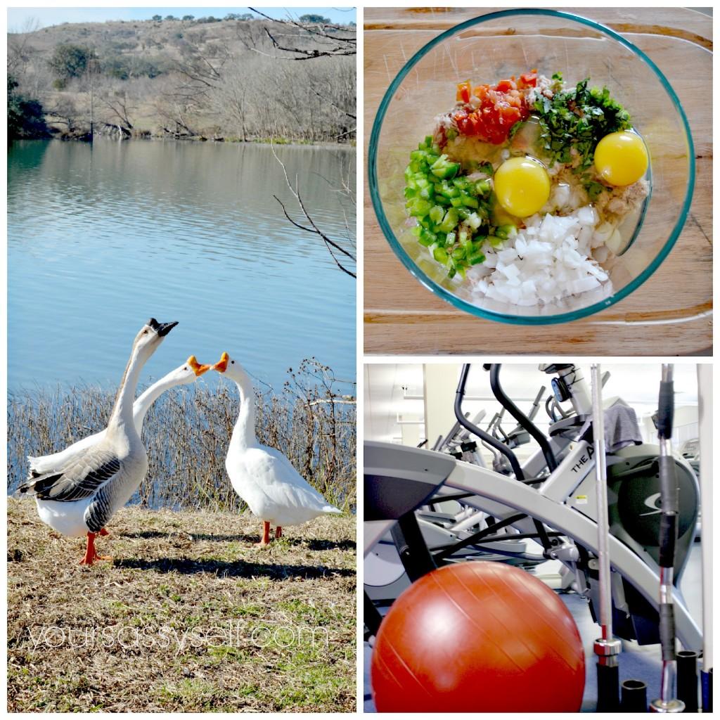 Nature Nutritious Food Exercise - yoursassyself.com