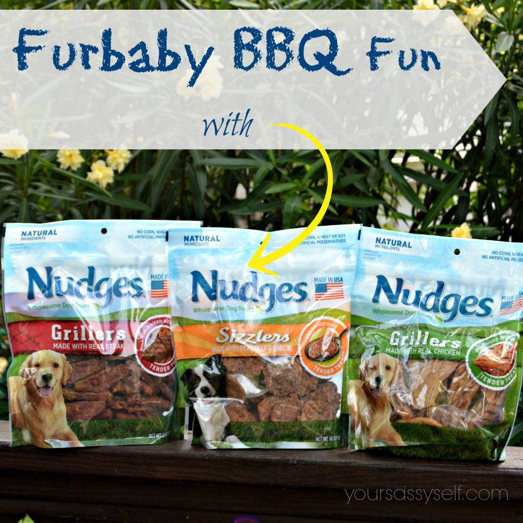 Furbaby BBQ Fun with Nudges® Grillers & Sizzlers - yoursassyself.com