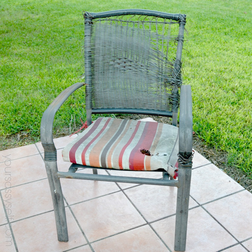 Chair Destroyed by Squirrels - yoursassyself.com