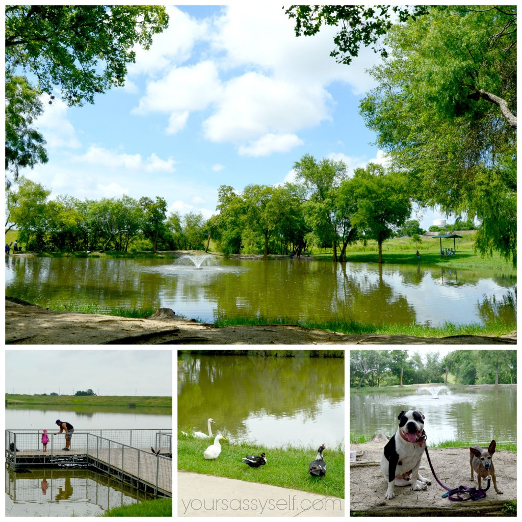 Live Oak City Lake - yoursassyself.com