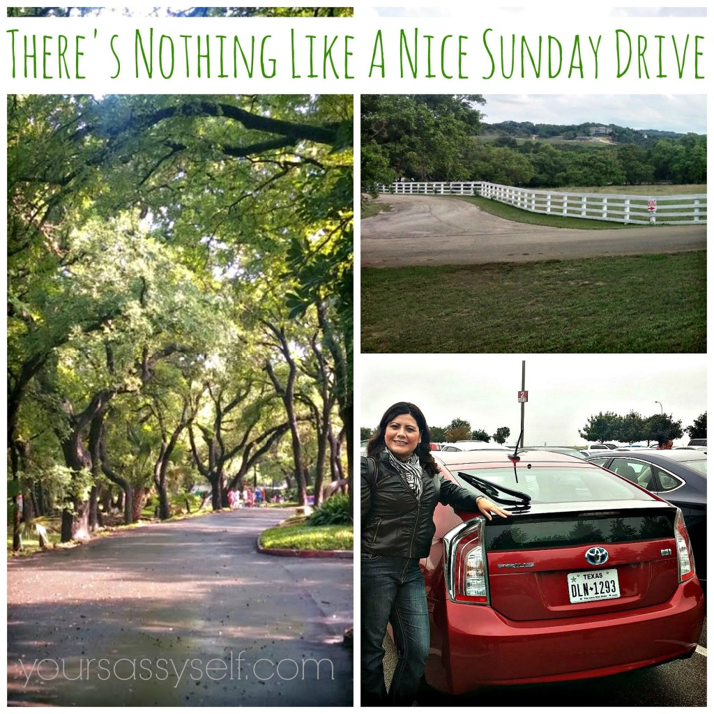 Sunday Drive - yoursassyself.com