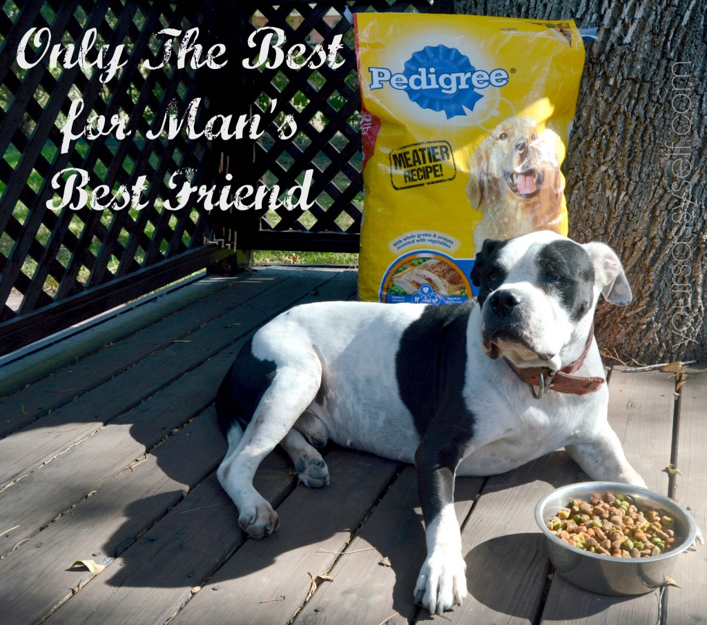 PEDIGREE® The Best for Man's Best Friend - yoursassyself.com