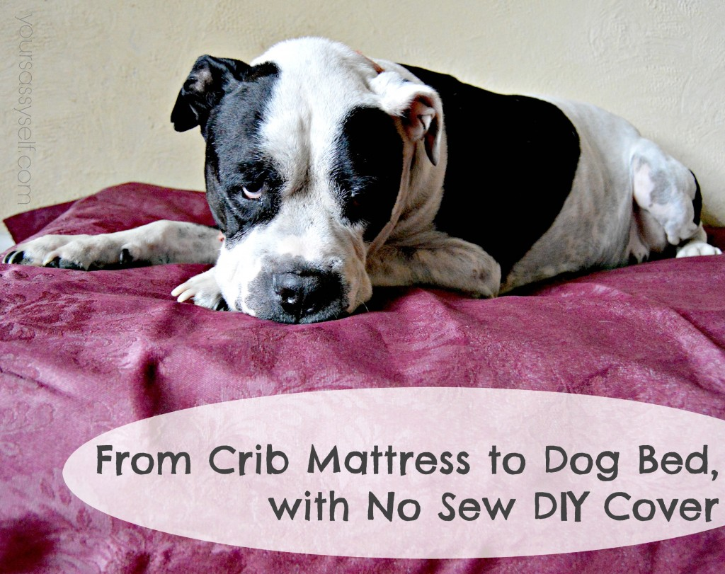 Crib mattress to dog bed - yoursassyself.com
