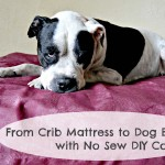 From Crib Mattress to Dog Bed, with No Sew DIY Cover