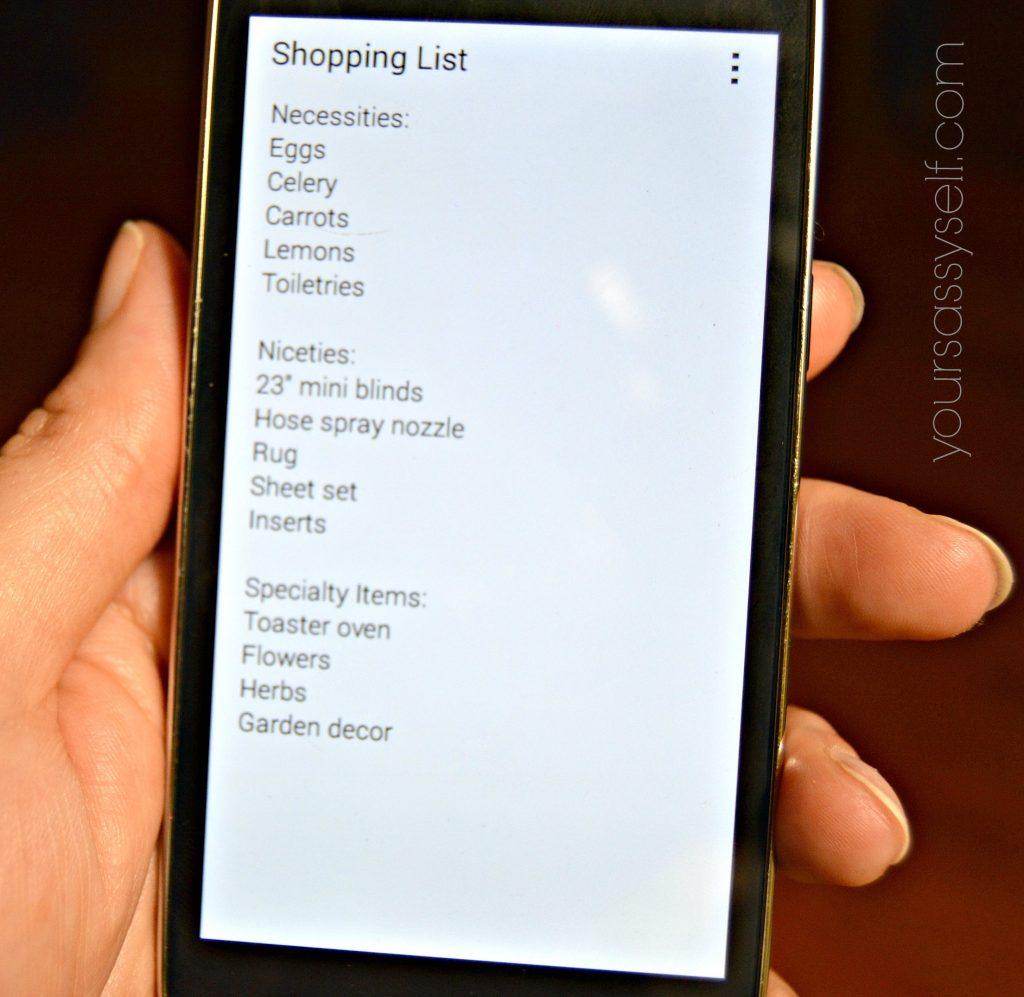 Digital Shopping List - yoursassyself.com