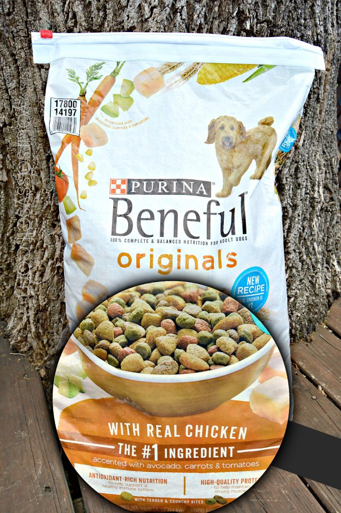 Purina Beneful Originals - yoursassyself.com