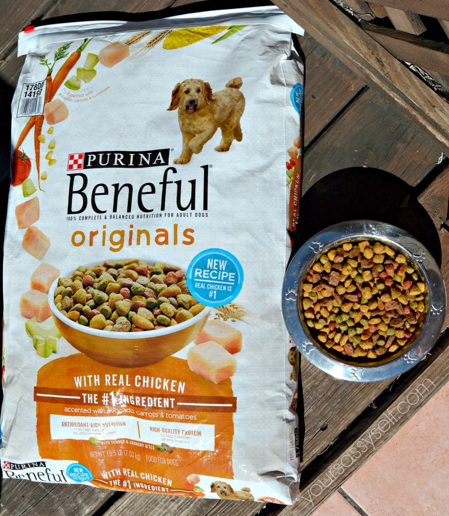 beneful-originals-with-real-chicken-yoursassyself-com