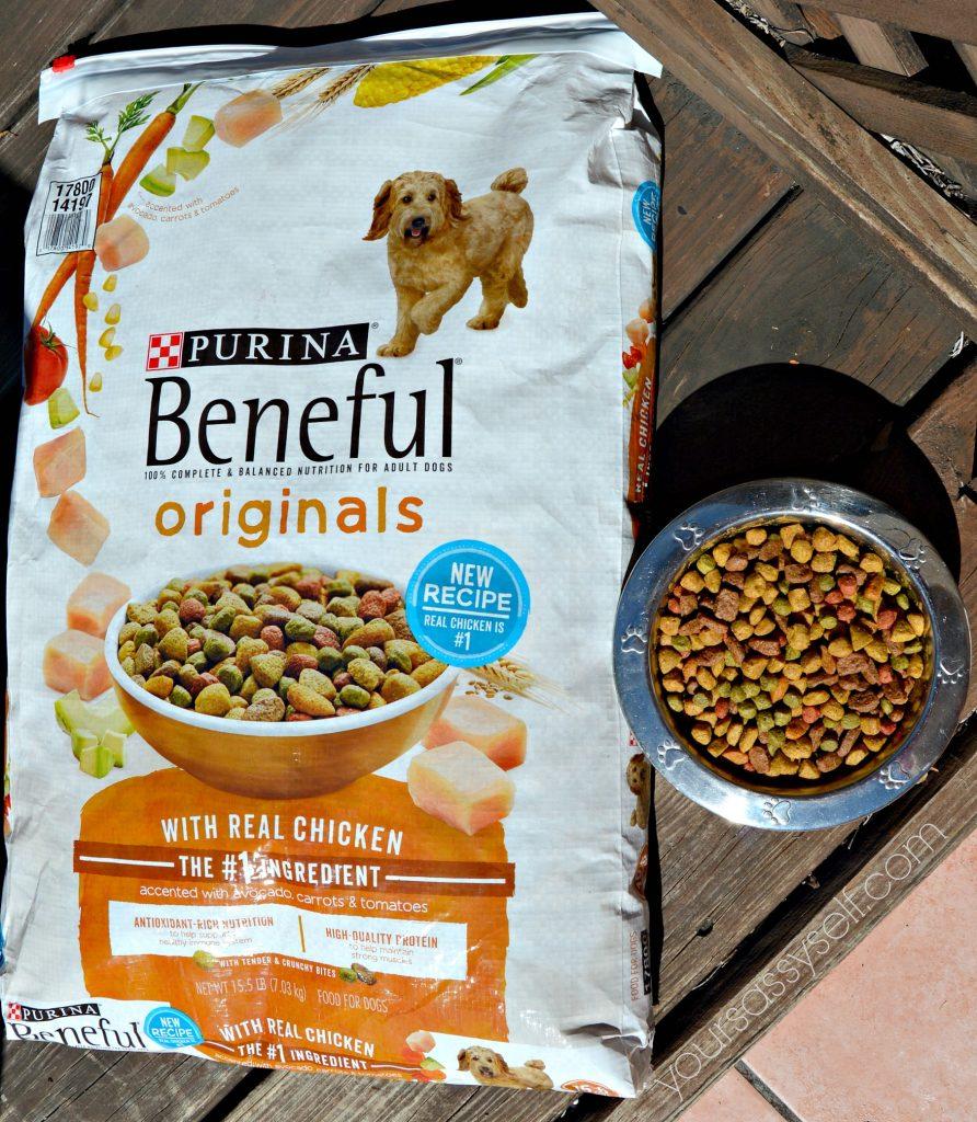 beneful-originals-with-real-chicken-yoursassyself-com