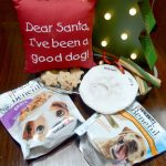 DIY Paw Print Ornament + Purina Text Coupon Offer at Target