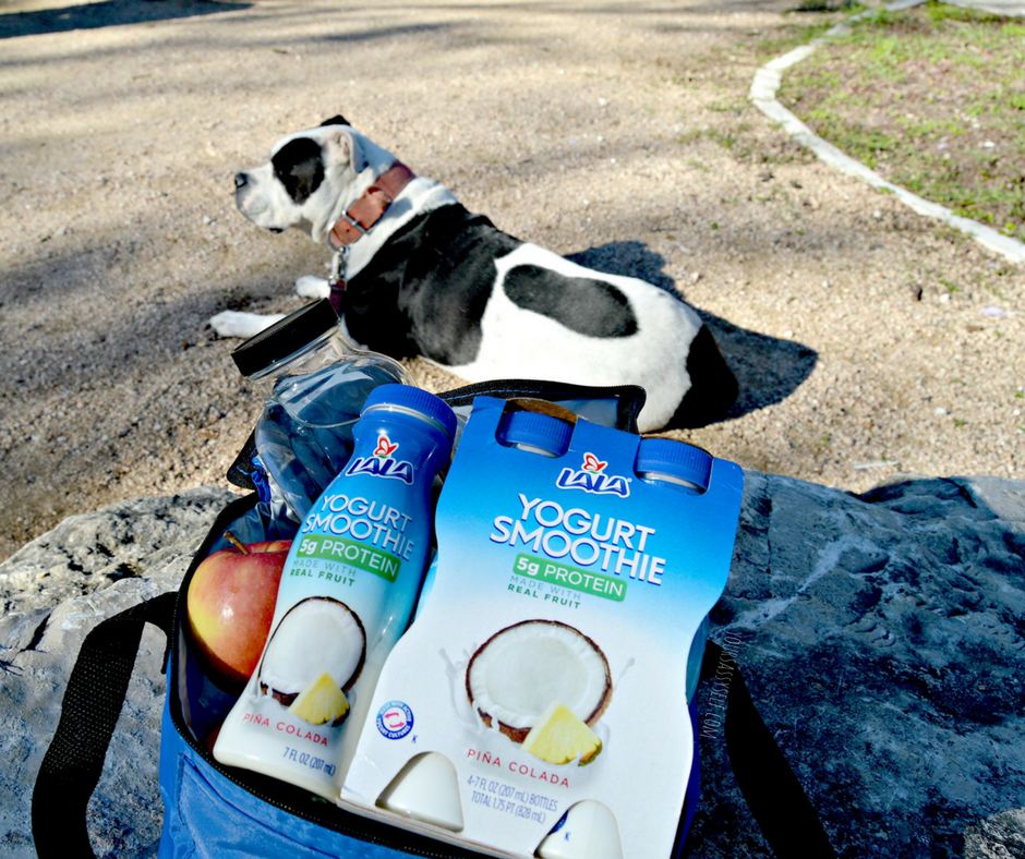 LALA® Yogurt Smoothies and the great outdoors - yoursassyself.com