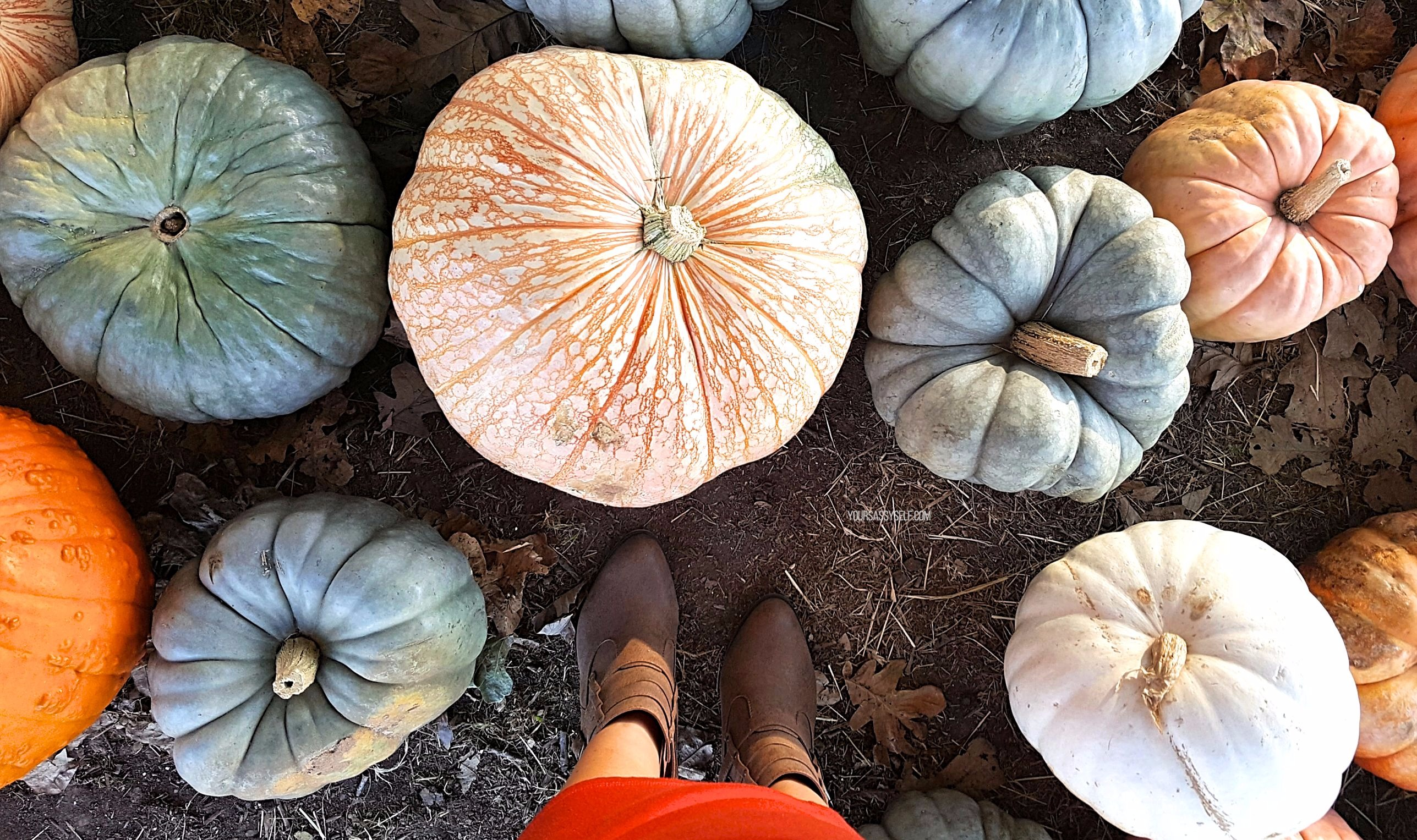 Fall Style at Pumpkin Patch - yoursassyselfcom